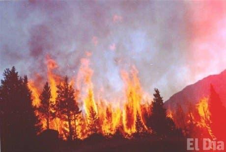 Como evitar los incendios forestales yahoo dating