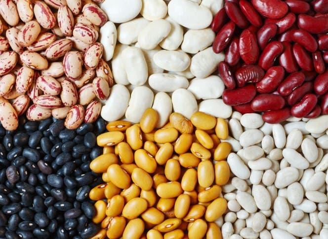 SJM: Agricultura compra 30 mil quintales de semillas de habichuelas a productores