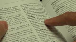 diccionario dominicano