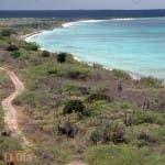 Los terrenos adyacentes a la playa de Bahía de las Águilas forma parte del Parque Jaragua. Foto: José de León/El Día.