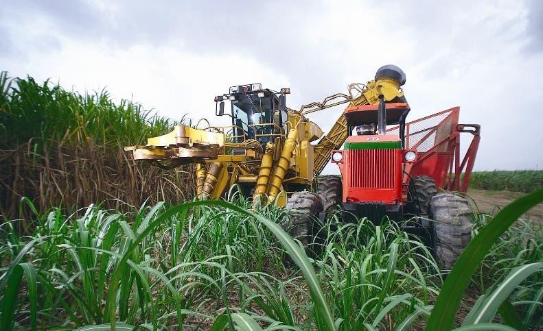 Central Romana produce 400 mil toneladas azúcar