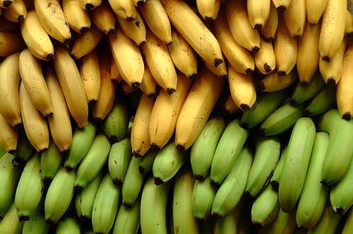elplatano-o-banano-sin-madurar