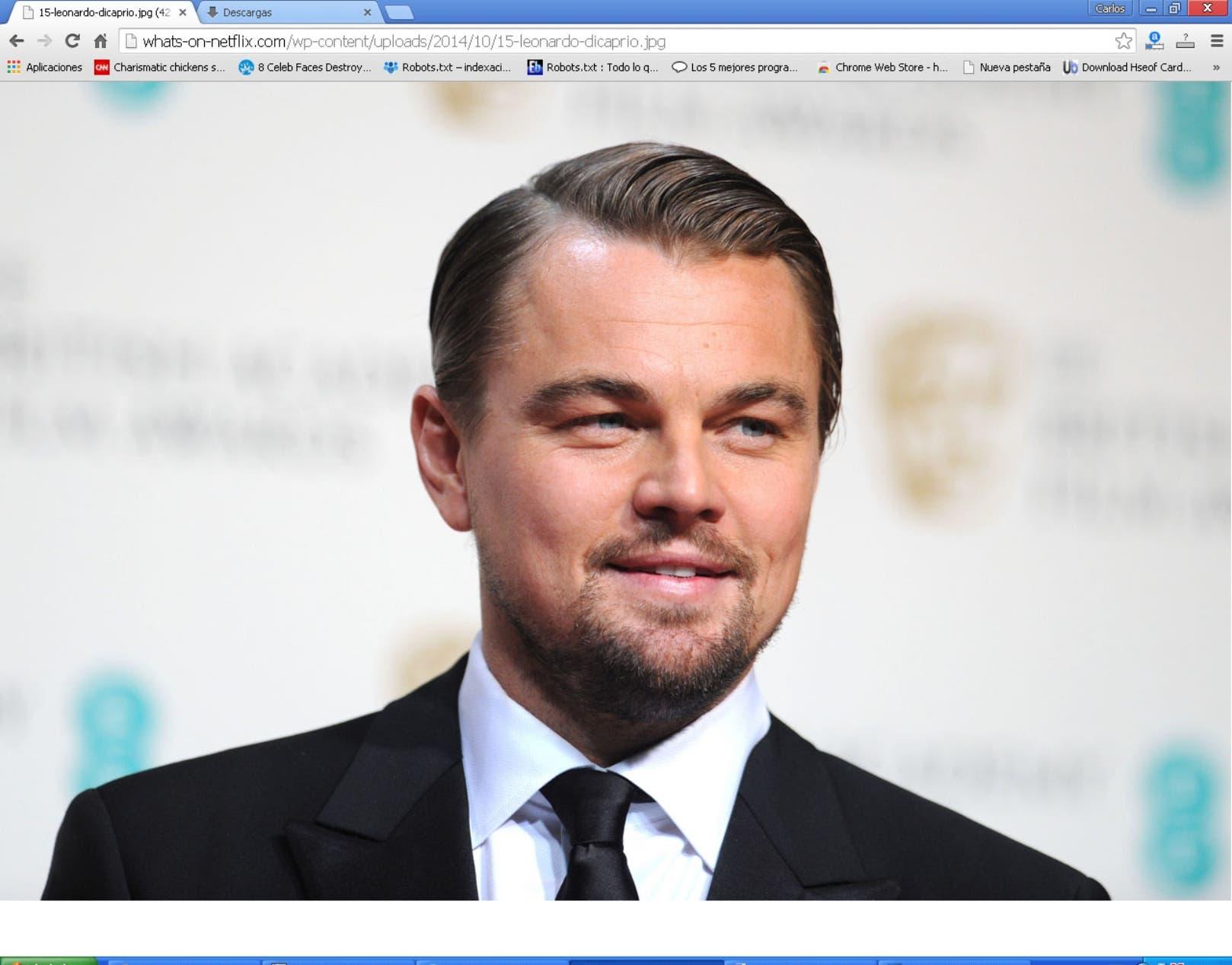 silueta Leonardo DiCaprio,p01