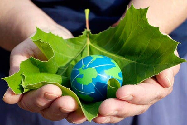 Red apoya acciones a favor del ambiente