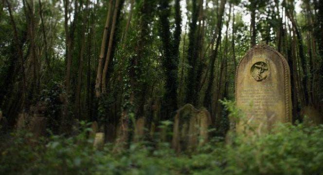 ¿Puede justificarse hacer ejercicios en un cementerio?