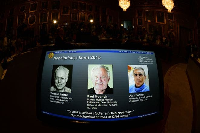 The portraits of the co-winners of the Nobel Prize in Chemistry 2015 (L-R) Sweden's Tomas Lindahl, Paul Modrich of the US and Turkish-American Aziz Sancar are displayed on a screen during a press conference on October 7, 2015 at the Royal Swedish Academy of Sciences in Stockholm. Sweden's Tomas Lindahl, Paul Modrich of the US and Turkish-American Aziz Sancar won the Nobel Chemistry Prize for work on how cells repair damaged DNA.     AFP PHOTO / JONATHAN NACKSTRAND