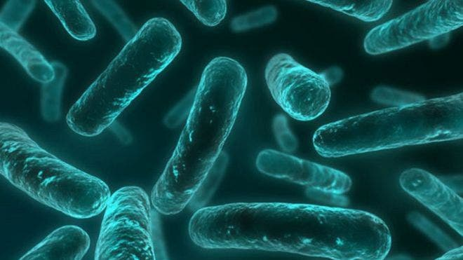 151119123455_resistencia_antibiotico_624x351_thinkstock_nocredit