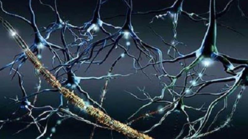 Avance terapéutico en esclerosis múltiple