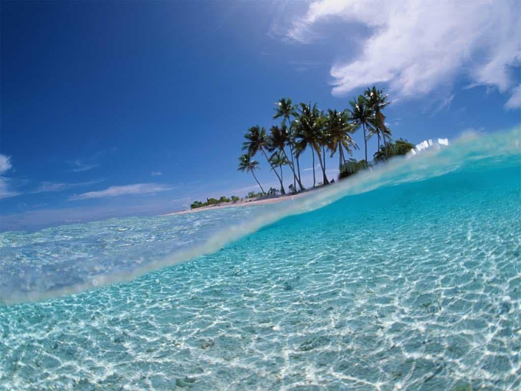 El mar subió 8 metros la última vez que el planeta tuvo la temperatura actual