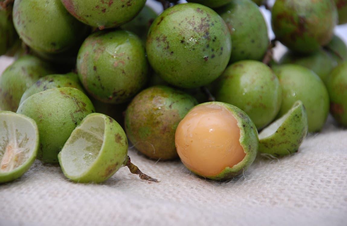 Un niño de 5 años fallece asfixiado con una semilla de limoncillo
