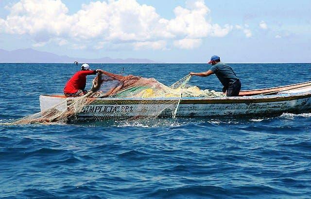 Sector pesquero no satisface la demanda local