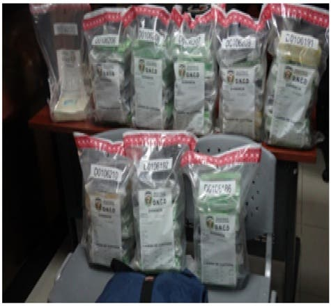 Dican ha decomisado más de 600 mil gramos de droga en los últimos tres meses