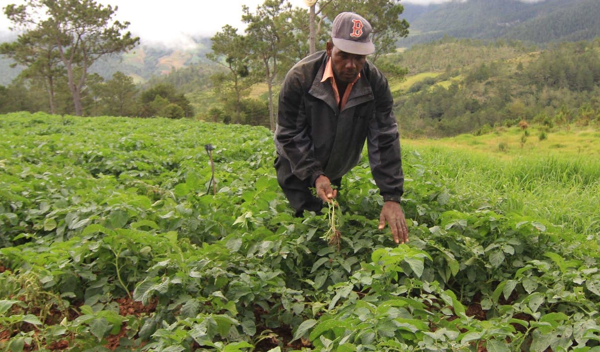 El gobierno ha dado un plazo a los agricultores de Valle Nuevo para que abandonen el lugar.