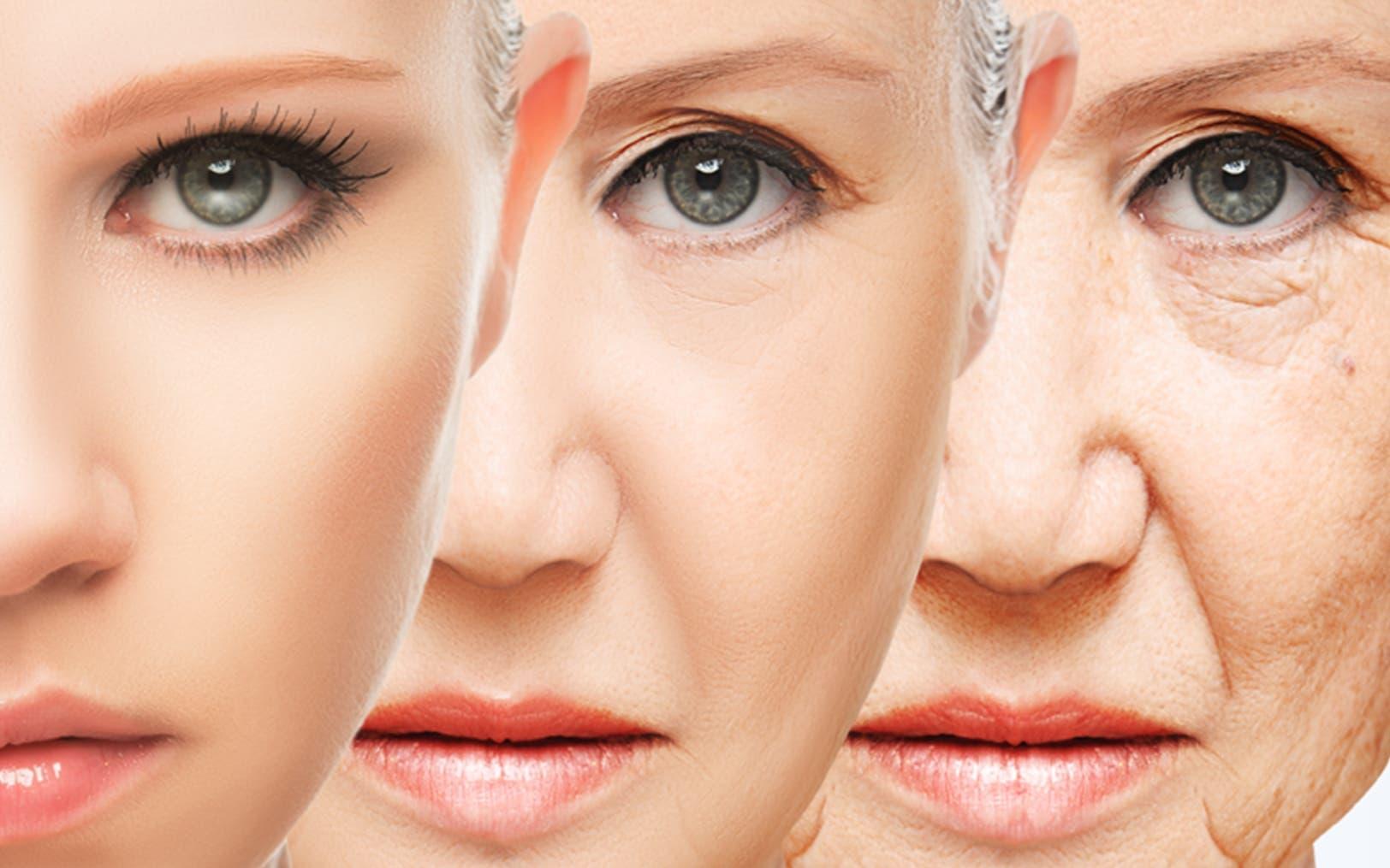 Resultado de imagen de antienvejecimiento