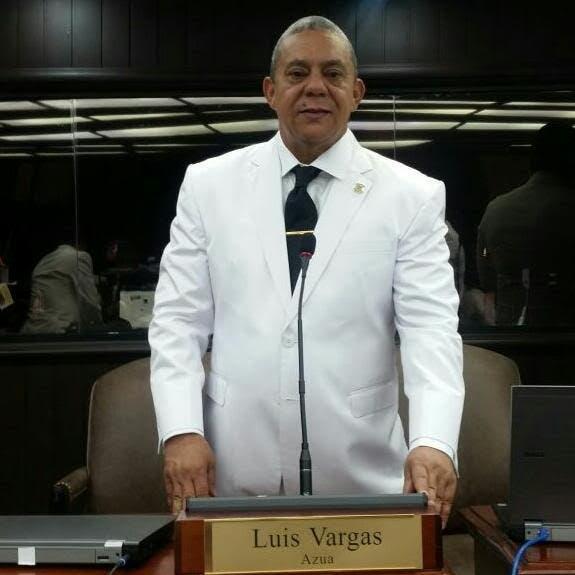 Diputado PLD somete resolución para que Cámara de Cuentas audite a Surún Hernández