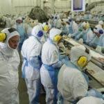 """El ministro  de Agricultura de Brasil, Blairo Maggi, realiza una inspección técnica al grupo cárnico JBS Seara en la ciudad de Lapa, estado de Paraná, Brasil. Según la policía, varias de las principales cárnicas del país, entre ellas JBS y BRF, con la complicidad de fiscales sanitarios corruptos, """"maquillaron"""" con productos químicos carnes que estaban en mal estado y no cumplían con los requisitos para la exportación.EFE"""