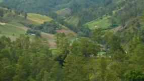 Sierras y llanos costeros de la isla de Santo Domingo.