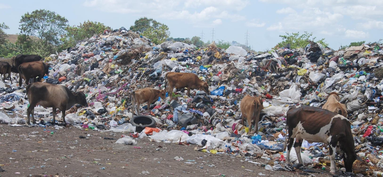 Los desechos de Los Alcarrizos están siendo depositados en la comunidad de San Miguel, generando malestar entre esos munícipes.