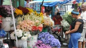 Ciudadanos acuden al mercado de las flores en San Carlos en busca de las distintas variedades  para regalar.