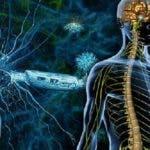 esclerosis-multiple-sintomas