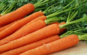 zanahoria-1