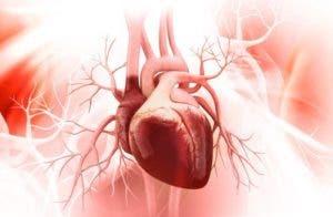 protege-la-salud-cardiovascular-500x327