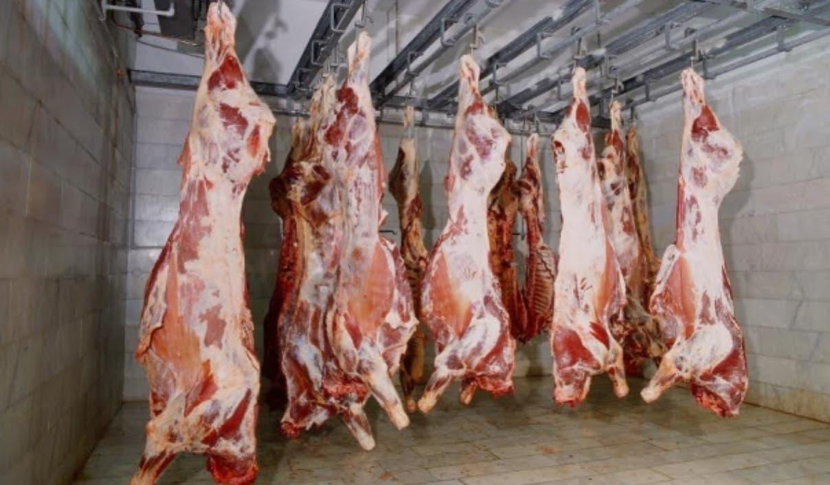 Se estima que en el país hay 2.5 millones de cabezas de ganado, según dijo Ricardo Barceló.