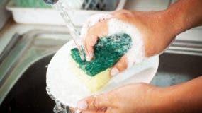 Investigadores en Alemania secuenciaron el ADN de las bacterias en esponjas de cocina.