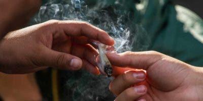 """La propuesta, que comienza ahora su proceso parlamentario, tiene como objetivo regular, a través de un instituto que se creará para tal fin, la """"siembra, cultivo, cosecha, producción, etiquetado, empaquetado, promoción, publicidad, patrocinio, transporte, distribución, venta y comercialización"""" de la marihuana."""