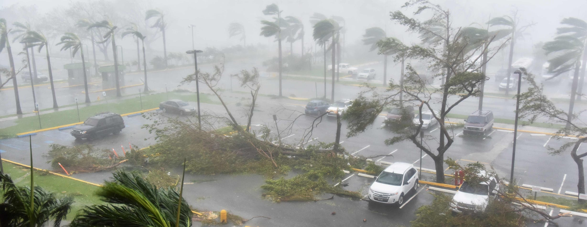 Pronostican habrá de cinco a nueve huracanes esta temporada