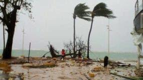 Gente camina junto a un árbol en la costa de Sainte-Anne en la isla caribeña de Guadalupe. AP