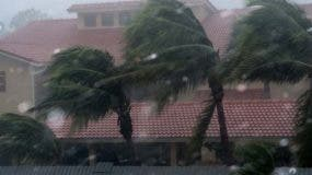 Los vientos del huracán Irma en Bonita Springs, Florida, al noreste de Nápoles, sufrieron el alboroto de las palmeras.