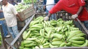 Alto costo de los alimentos  limita la adquisición de los clientes.