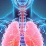 _98735582_pulmones