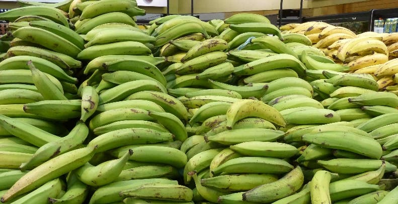 El  plátano subió de un promedio de 10 pesos a 25 pesos.