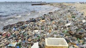 Ocho millones de toneladas de plástico entran a los océanos cada año, causando anualmente la muerte de más de un millón de aves y de cerca de 100.000 tortugas y mamíferos, según la ONU.