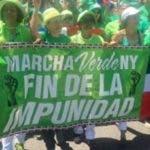 partidos-politicos-apoyan-convocatoria-marcha-verde-en-ny
