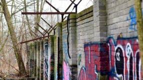 una pieza de 80 metros (260 pies) del muro de Berlín en un bosque en Berlín. El remanente recientemente descubierto del Muro de Berlín desde los primeros días de la fortificación fuertemente fortificada recibe protección.(Maurizio Gambarini / dpa vía AP)