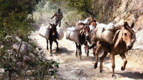 Los agricultores de subsistencia enclavados en las lomas de San Juan sacan sus cosechas en mulos a la comunidad Boca de Los Arroyos debido al mal estado del camino vecinal.  ALBERTO CALVO