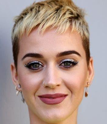 La artista Katy Perry