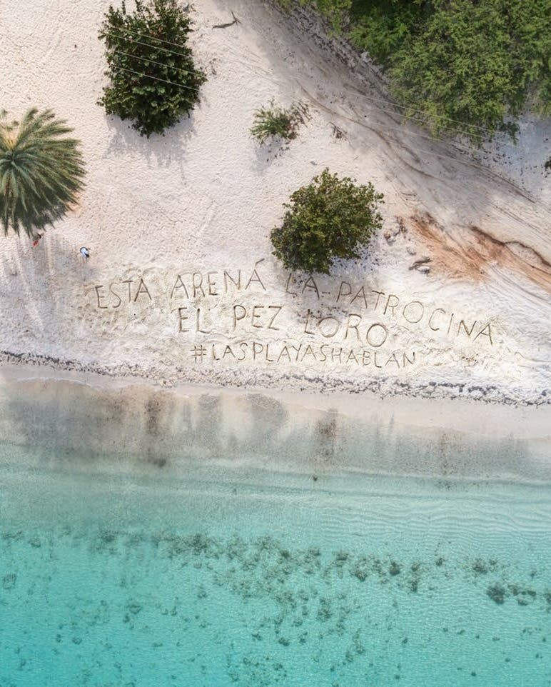 """Jumbo lanza campaña """"Nuestras playas hablan"""" contra consumo del pez loro"""