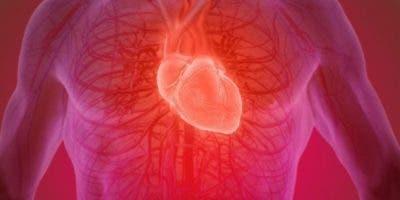 Tras sufrir un infarto, millones de células musculares del corazón se pierden de manera irreversible.