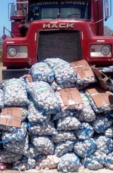 Contrabando de ajo a aumentado en ultimos meses