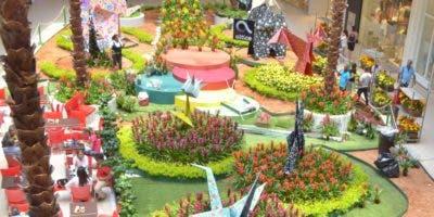 Durante la exhibición en el atrio de la plaza,   jardinerías comercilizarán flores.  Ana marmol
