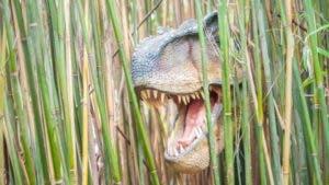 La idea de recrear dinosaurios a partir de material genético preservado durante millones de años también es problemática.