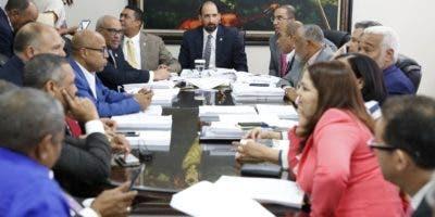 Diputados dieron un plazo de 30 días a la comisión especial que estudia el proyecto de ley.