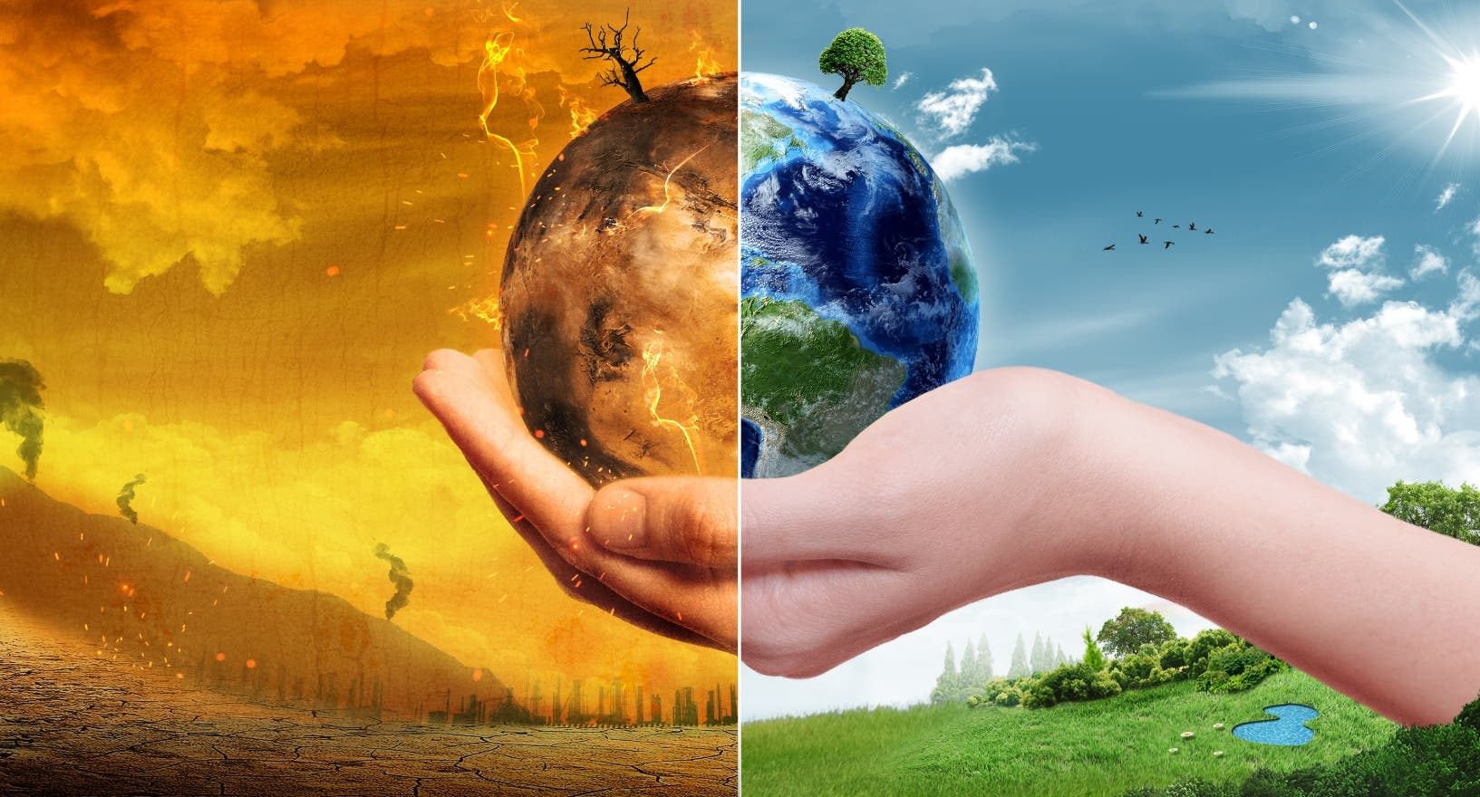 La preservación de los recursos naturales  ayuda  a evitar  el calentamiento global y sus impactos negativos.