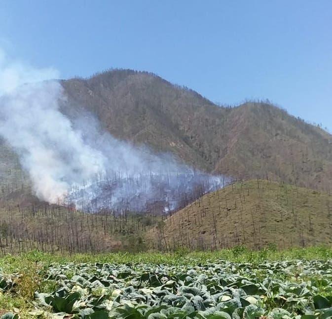 Incendio forestal afecta zona de Valle Nuevo