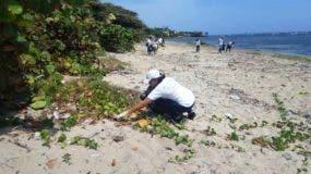 instituciones-de-puerto-plata-reaalizan-jornada-de-limpieza-de-costa-en-playas-del-malecon-local