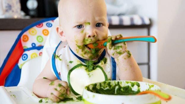 Durante los seis primeros meses de vida los bebés sólo deberían tomar leche materna.